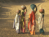 Girls Wearing Sari with Water Jars Walking in the Desert, Pushkar, Rajasthan, India