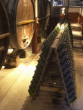 Oak Aging Vats and Pupitres for Fermenting Sparkling Wine, Bodega Pisano Winery, Progreso, Uruguay
