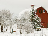 Red Barn in Fresh Snow, Whidbey Island, Washington, USA
