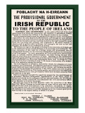 Irish Republic Premium Poster