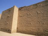 Holy Bull, Babylon, Iraq, Middle East