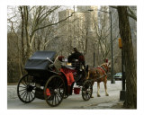 Carriage in the Park Photographic Print