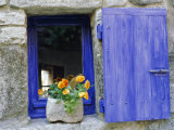 Close-Up of Blue Shutter, Window and Yellow Pansies, Villefranche Sur Mer, Provence, France
