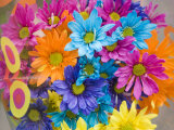 Colorful Bouquet of Flowers, Lincoln, Nebraska