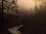Buy South Fork of Smith River at Sunrise, California at AllPosters.com