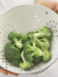 Freshly Washed Broccoli Florets in Sieve