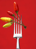 Four Chili Peppers on a Fork Photographic Print