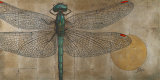 Dragonfly on Silver Art Print