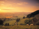 Coaley Peak, Dursley, Cotswolds, England