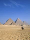 Giza Pyramids, Cairo, Egypt