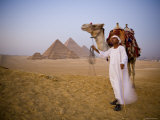 Camel and Driver at the Pyramids, Giza, Cairo, Egypt