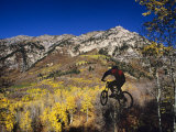 Mountain Biking in Fall, Uinta National Forest, Provo, Utah