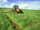 Tractor Cutting Grass Meadow for Silage Farming, UK