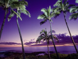 Buy Sunset, Poipu Beach, Kauai, HI at AllPosters.com