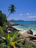 Tropical Beach, La Digue Island, Seychelles