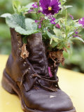 Flower Boot, Country Village Shops and Cafes, WA