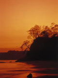 Buy Pacific Coast Rain Forest at Dusk, Costa Rica at AllPosters.com