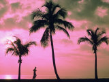 Silhouette of a Runner and Palm Trees Photographic Print