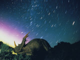 Northern Lights and Meteor Trails over a Replica of a Styracosaurus