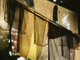 Sunlight Filters Through Prayer Flags Hanging in Kathmandu