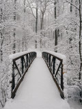 A View of a Snow-Covered Bridge in the Woods