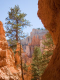 A View of the Hoodoos and Erosion in Bryce Canyon