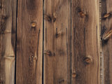 Wood-Paneled Wall