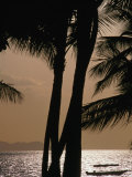 Buy Tropical Island Paradise, Fiji, Pacific at AllPosters.com