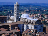Buy Rooftops and Siena Cathedral Siena, Tuscany, Italy at AllPosters.com