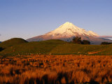 Snow-Capped Mt. Taranaki from Across Plain, Taranaki, North Island, New Zealand