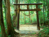 Mountain Shrine, Yakushima, Kagoshima, Japan