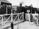 The Cambrian Coast Express Steam Locomotive Train at Llanbadarn Crossing Near Aberystwyth Wales