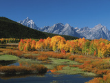 Mt. Moren, Oxbow Bend, Grand Tetons National Park, Wyoming, USA