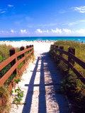 Boardwalk, South Beach, Miami, Florida, USA