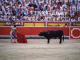 Matador Waving a Red Cape in Front of a Bull