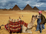 An Egyptian Man Rests His Camel Waiting for Locals and Tourists to Rent It