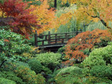 Japanese Gardens, Portland, Oregon, USA