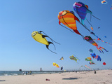 Colorful Kites Dot the Sky