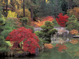 Kiri Pond and Bridge in a Japanese Garden, Spokane, Washington, USA