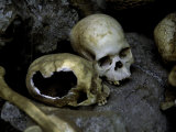 Skulls and Bone, Indonesia