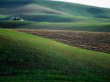 Rolling Hills and Ploughed Field in Spring, Palouse, U.S.A.