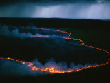 Buy Aerial View of the Glowing Ring of a Forest Fire at AllPosters.com