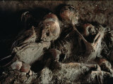 A Close View of Embracing Skeletons Excavated on Herculaneums Beach