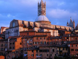 Buy View Across Rooftops to the Gothic Cathedral, Siena, Tuscany, Italy at AllPosters.com