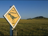 A Playful Sign Warns Motorists to Watch out for Dinosaurs