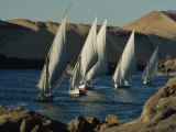 Fleet of Feluccas Parade down the Nile River near Aswan