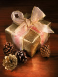 Christmas Gift with Gold Ribbon and Pinecones Fotografie-Druck