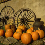 Pumpkins, Wagon Wheels and Milk Can, Todd, NC