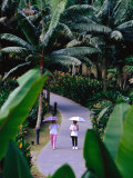 Women Walking in Singapore Botanic Gardens, Singapore, Singapore