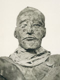 Rameses III Pharaoh Photograph of the Head of His Mummy